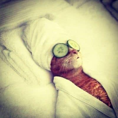 Pinksterdag…. relax dag….