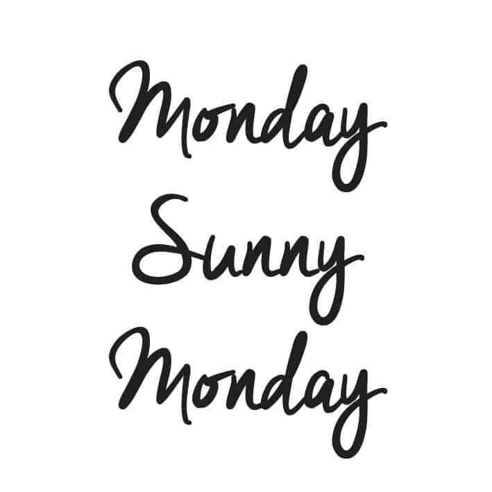 MONDAY… SUNNY… MONDAY…