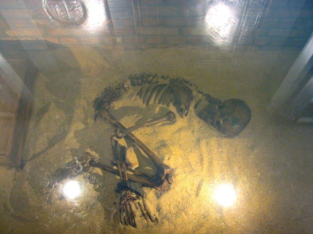 Zwolle AIRBNB skelet