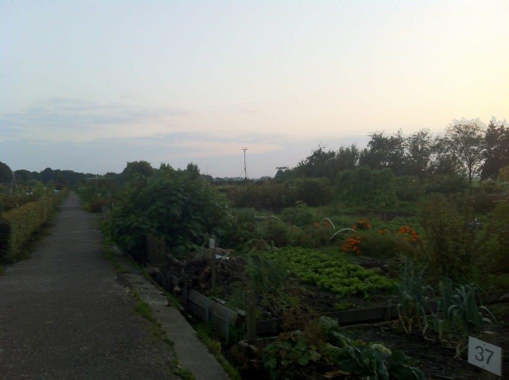week 35 wandeling tuincomplex