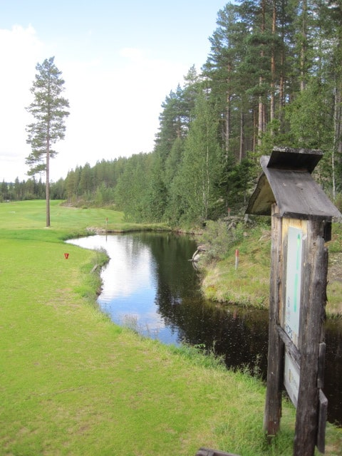 zweden golfen