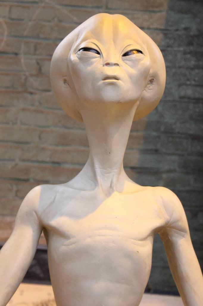 IJhallen alien