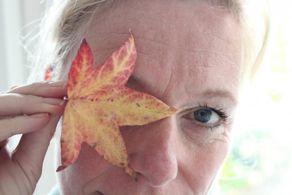 week 43 herfst