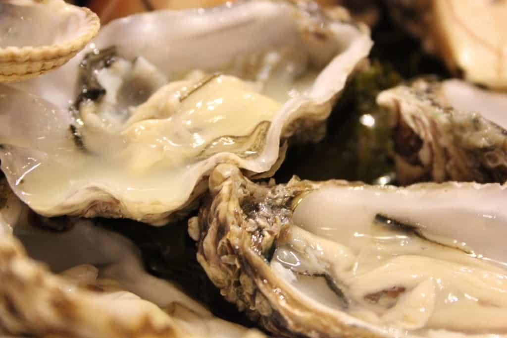 week 43 oester stork