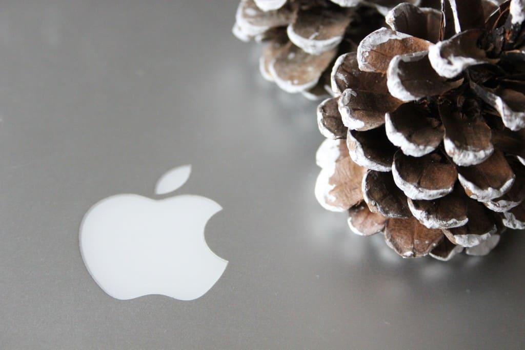 kersthuis apple