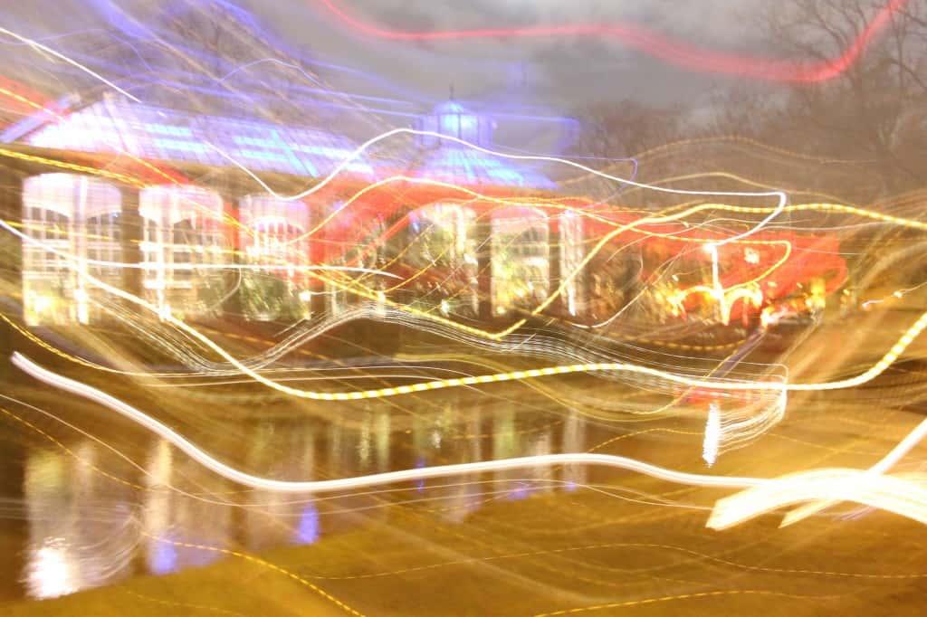 Amsterdam Light Festival Hortus
