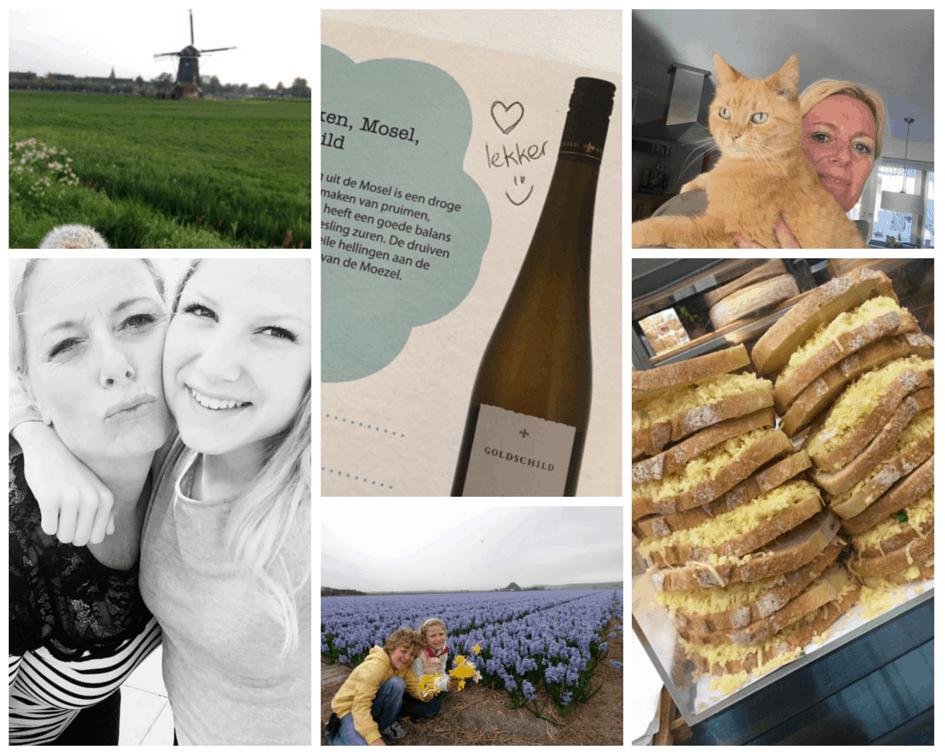 Snapshots #19/2015   ENJOY! The Good Life