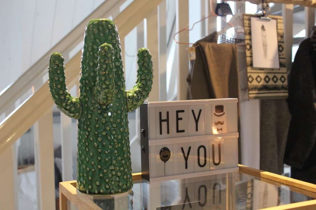 edam cactus