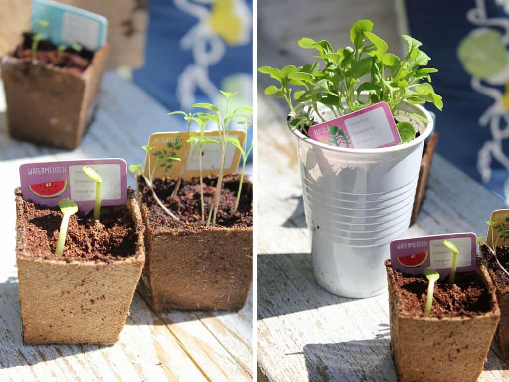 TUINVERMAAK #De eetbare tuin | ENJOY! The Good Life