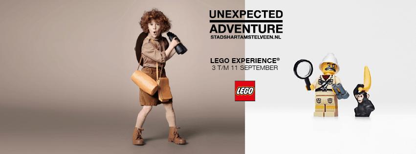 wt lego experience