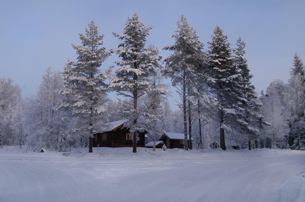 zweden s natuur1