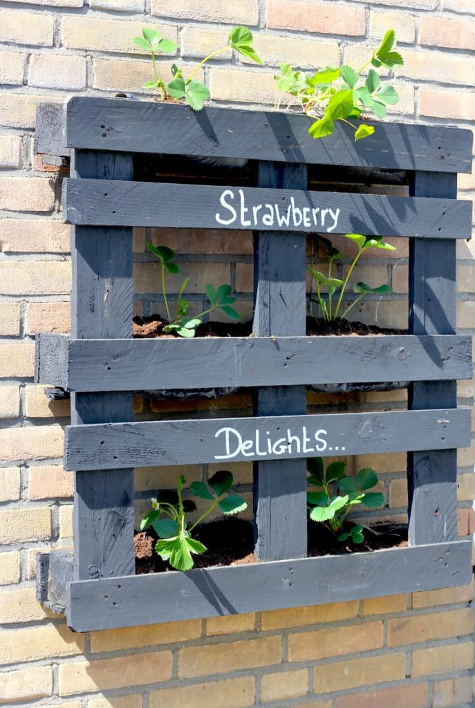 DIY: Strawberry Delights pallet | ENJOY! The Good Life