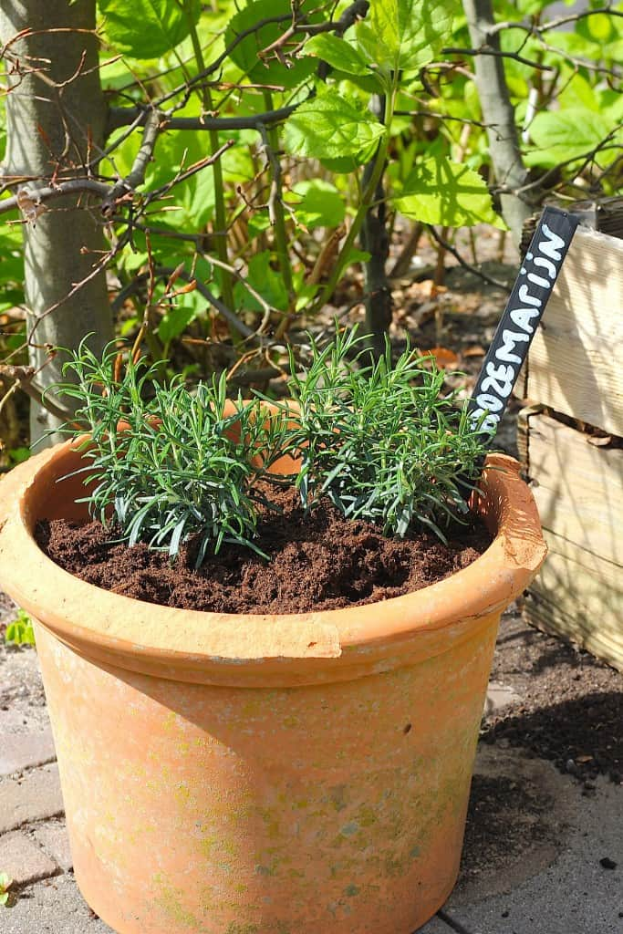 DIY: Plantenbordjes voor de moestuin | ENJOY! The Good Life