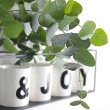 Interieur trend: Eucalyptus