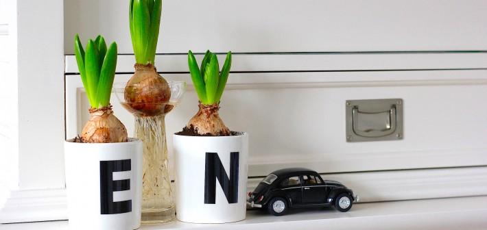 Lentekriebels, bloembollen en kleur in je interieur