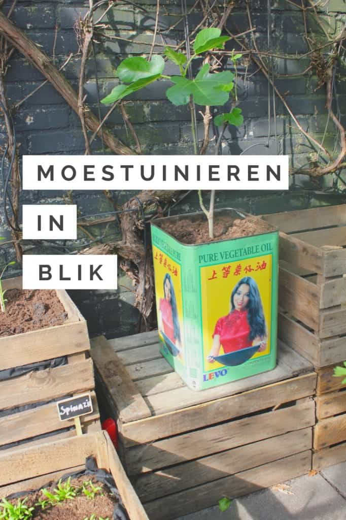 Moestuinieren in blik | ENJOY! The Good Life