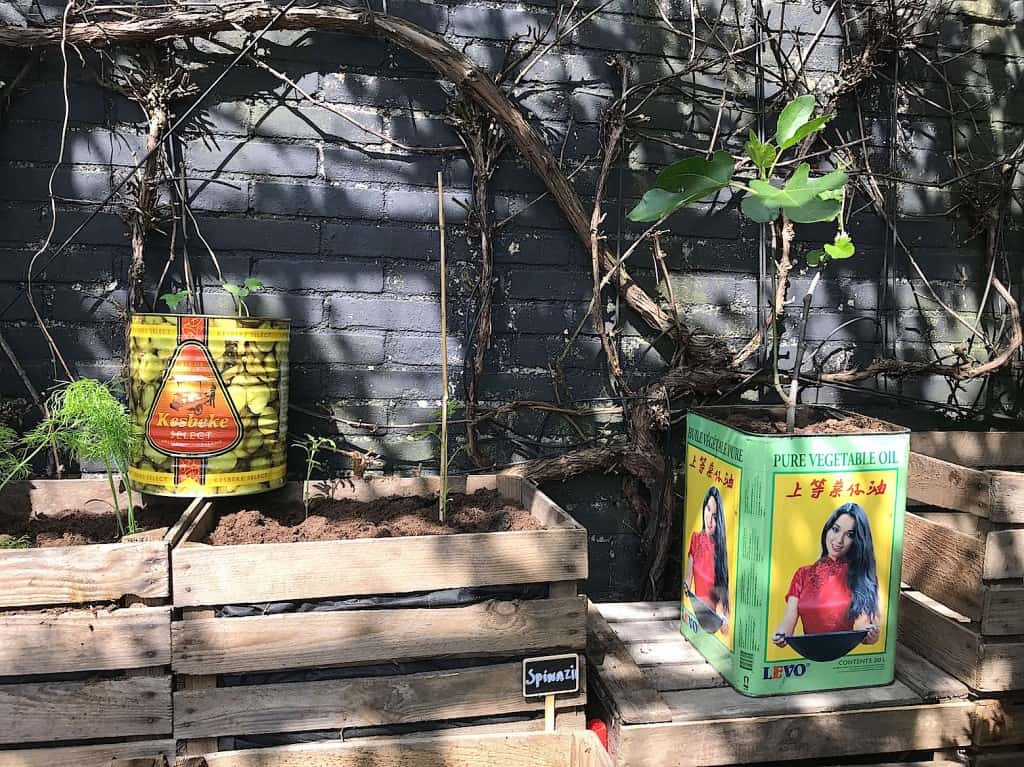 DIY: Moestuinieren in blik   ENJOY! The Good Life