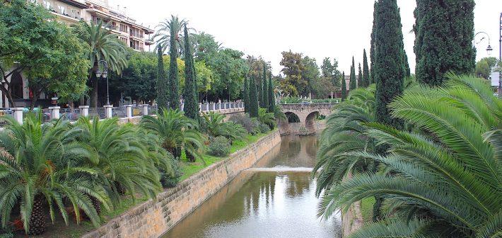 Mallorca! Een geweldige herfst/winter bestemming