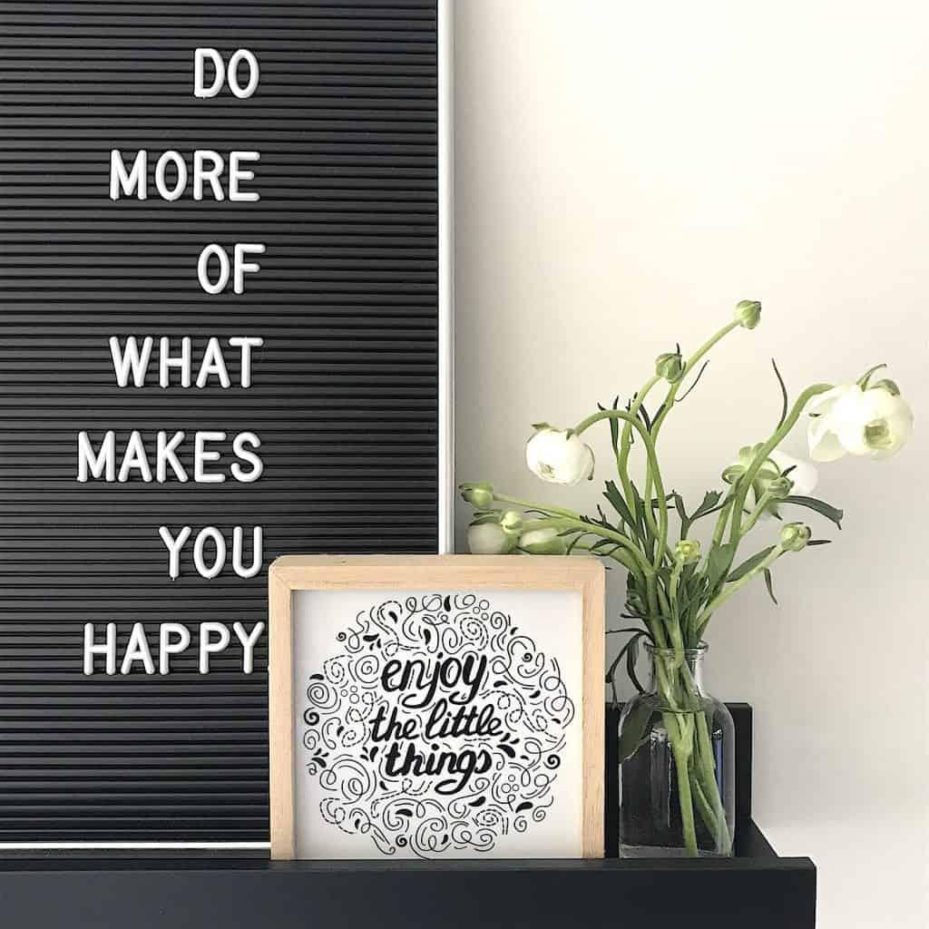SNAPSHOTS WEEK 8/2019 | ENJOY! The Good Life