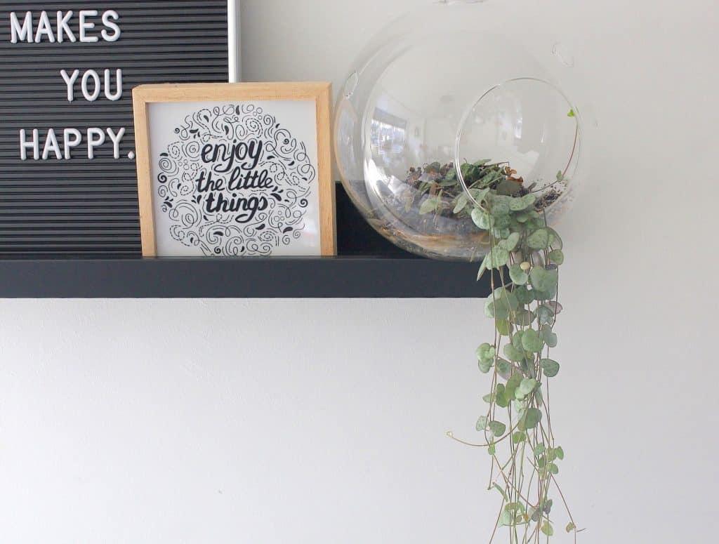 Chinees Lantaarnplantje, een hartelijk hangplantje | ENJOY! The Good Life