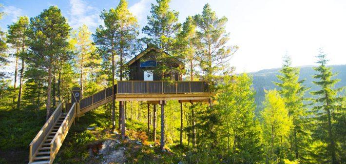 Overnachten in een Treehouse in Noorwegen
