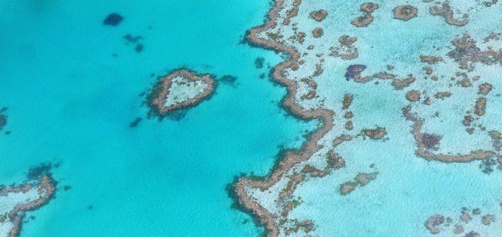 3 meest bijzondere duikplekken ter wereld
